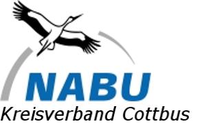 Nabu Cottbus
